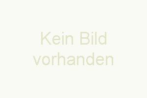 Bild 3: Zentral! Niedliches 1-Zi.-Apartment (35 qm) - (018) - English text below